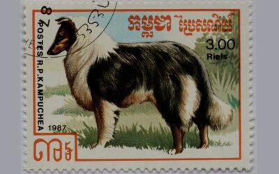 Briefmarken mit Collie-Motiven