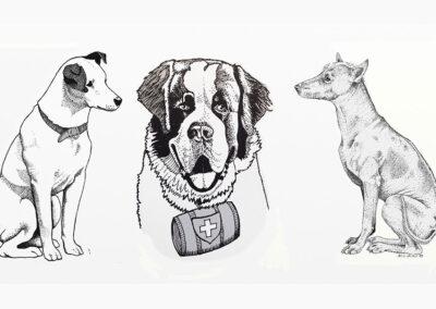 Tierillustrationen Collage