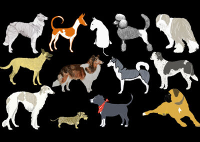 Collage von Hundeillustrationen